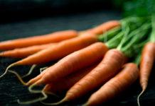 huile végétale carotte