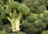 Huile végétale brocoli